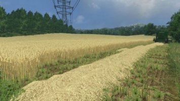 Wheat barley and rape textures