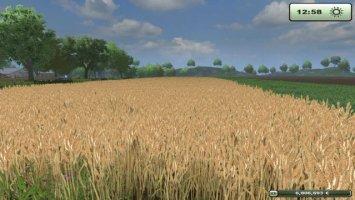 Wheat texture ls2013