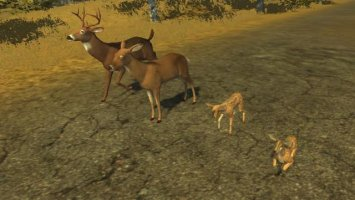 Forest animals (placeable) ls2013