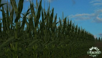 Real Maize HD Texture v1.1