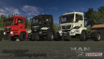 MAN-Stapel Agro Truck ls2013