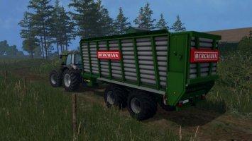 Bergmann HTW 45 0.99