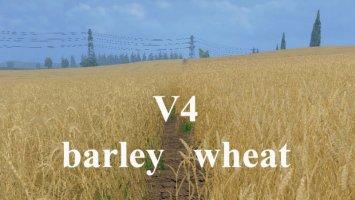 Tekstura pszenicy i jęczmienia v4 ls15
