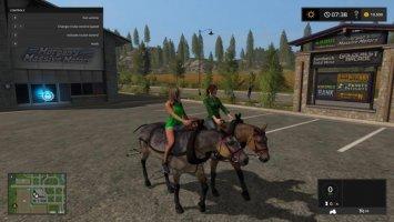 Hard Working Horses