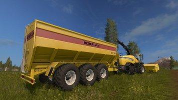Bergmann GTW430+ FS17