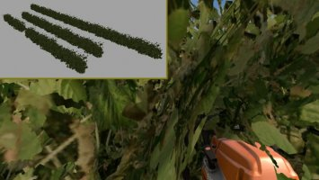 Removable Hedges FS17
