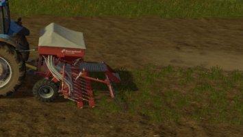 Wild Grass FS17