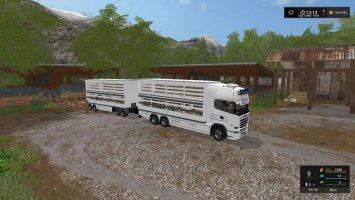 Scania cattle transport