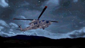 UH-60L Black Hawk FS17