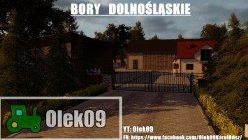 Bory Dolnoslaskie by Olek09 FS17