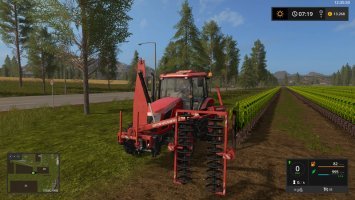 Collard_Pre-Pruning Vineyard FS17