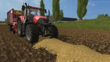Real straw fs17