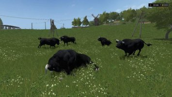 Black bull FS17
