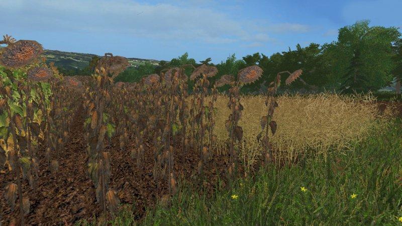 Forgotten Plants - Textureset v1.1 FS17
