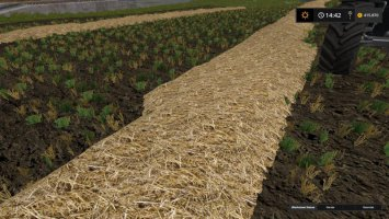 Real Straw Texture fs17