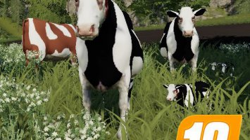 Cow Family Placeable for the farm with sound