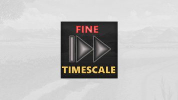Fine Timescale Adjustment