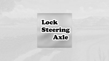Lock steering axle