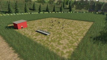 Placeable Free Range Chickens fs19