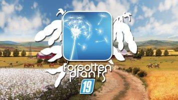 Forgotten Plants - Soybean fs19