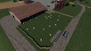 FS09 Sheep Husbandry