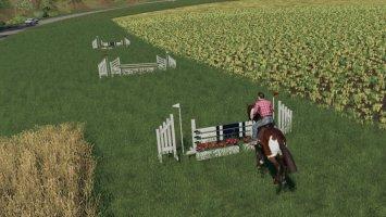 Hindernisse Pferdesport fs19
