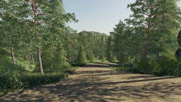 Thuringia forest
