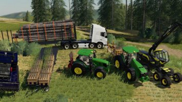 Forest Pack fs19