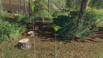 Player Plant Trees fs19