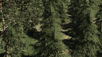 Trees textures fs19