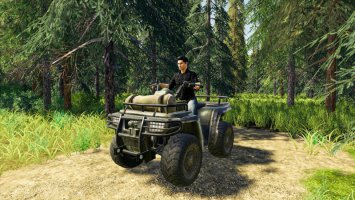 Lizard Quad Bike fs19
