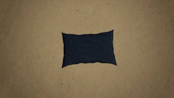 Placeable Pillow fs19