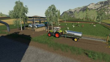 Dairy Sheep fs19