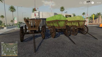 Leiterwagen fs19