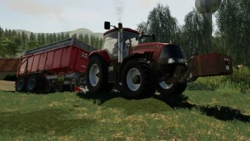 Case Magnum 389 Limited Edition fs19